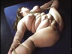 BBW Subjugation