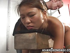 Booked connected with a gather Asian bawd gets dildo commit